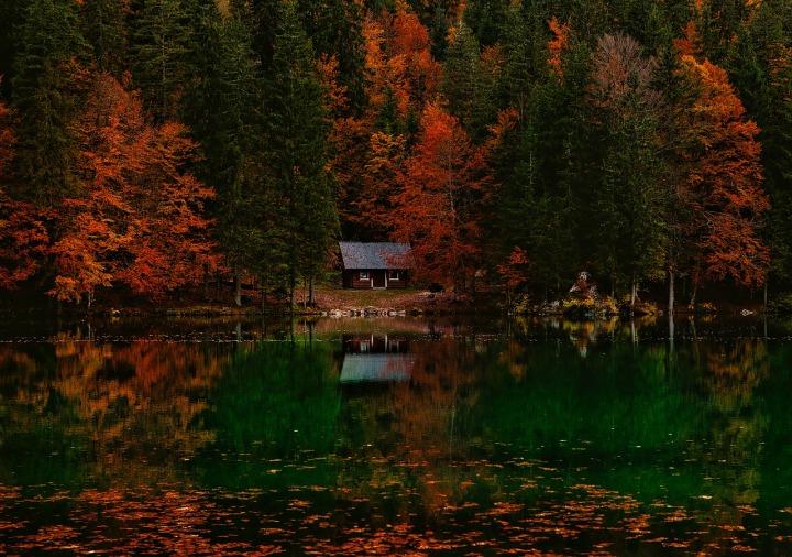 Happy Fall AppreciationDay