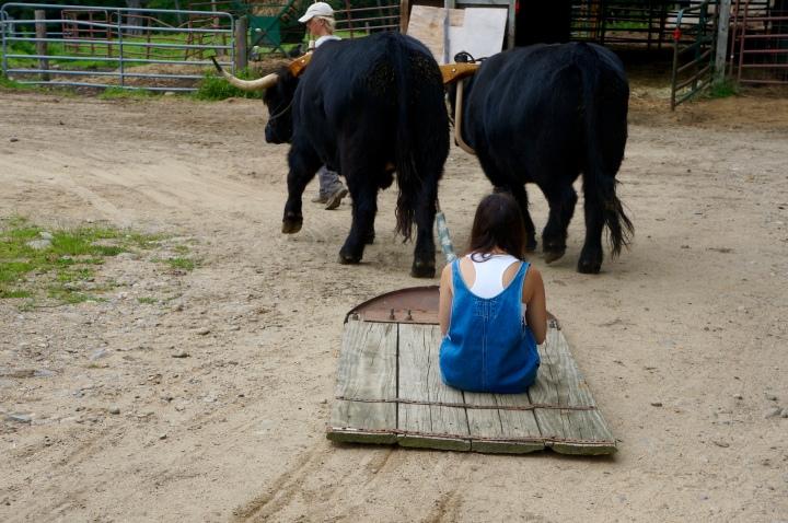 Loudon, NH: A FarmGetaway